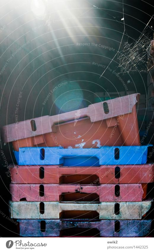 fish cans Box Crate Stack Consecutively Together Plastic Illuminate Bright Blue Pink Red Calm Empty 6 Spider's web Cobwebby Lens flare Harbour thiessov Rügen