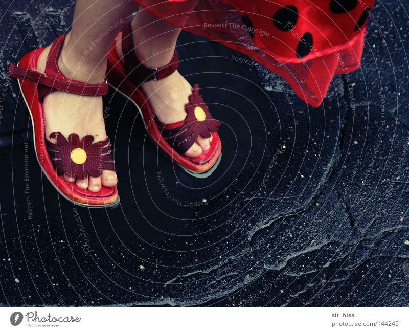 Flower Summer Joy Street Playing Dream Feet Rain Footwear Dance Wet Toes Puddle Daydream