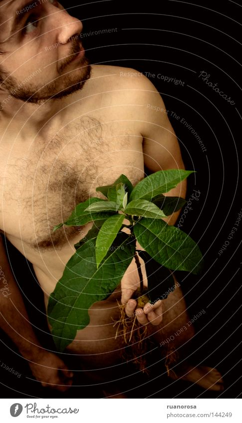 Human being Man Hand Green Plant Face Calm Leaf Body Serene Stalk Nude photography Indicate Root Accidental Root of a tree