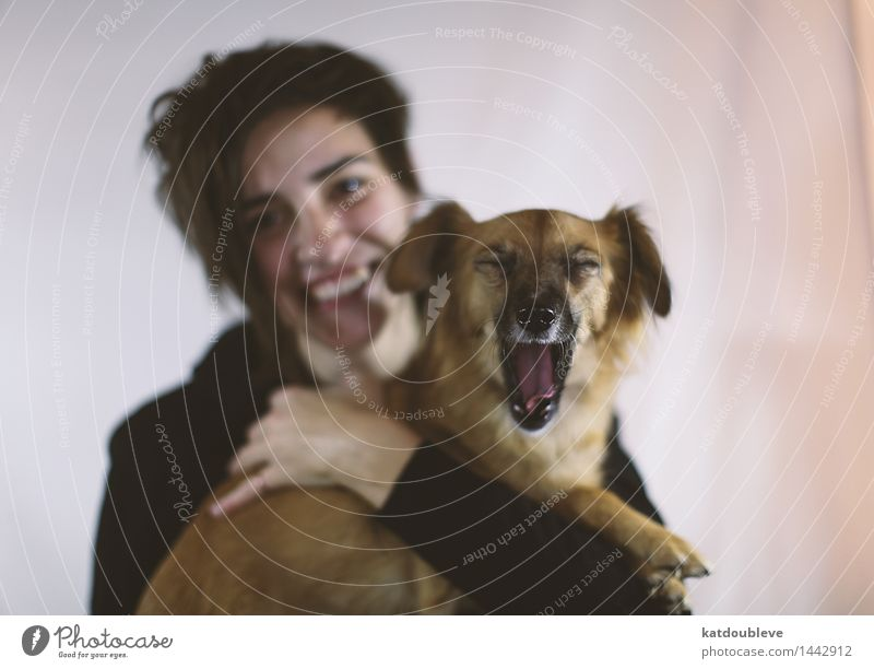 Human being Dog Animal Joy Happy Freedom Together Friendship Living or residing Leisure and hobbies Happiness Communicate Cool (slang) Friendliness Safety Attachment