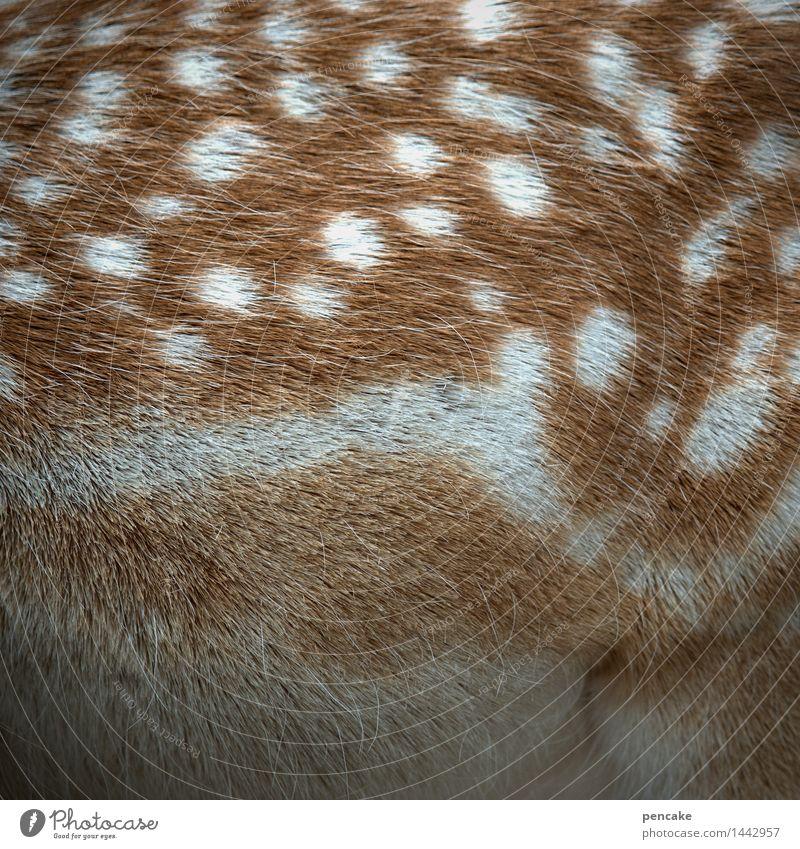 Comic book bambi Nature Animal Wild animal Baby animal Sign Famousness Cute Fawn Bambi Pelt Point Polka dot Colour photo Exterior shot Close-up Detail