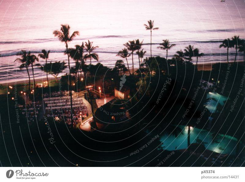 Ocean Vacation & Travel Dark Island Travel photography Hotel Idyll Paradise Cliche Pacific Ocean Hawaii Characteristic Swell Resort Palm beach Paradisical