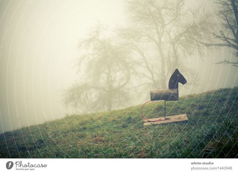 gloomy country Nature Threat Nightmare Loneliness Idyll Calm Fog Shroud of fog Misty atmosphere Horse Playground Hopelessness Sadness Without prospects Poverty