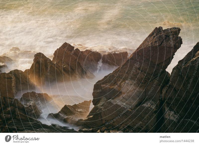 sunbeam Nature Landscape Beautiful weather Rock Waves Coast Ocean Deserted Illuminate Dark Brown Gold Green White Cliff Sunbeam Colour photo Subdued colour