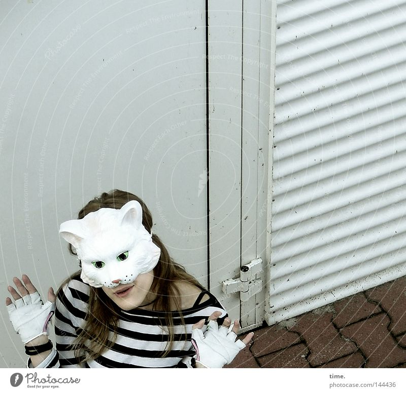 Sorry, Catfood Not Available [La Chamandu] Joy Feminine Woman Adults Fingers Door T-shirt Mask Gloves Crazy Gray Striped Gesture Posture cat mask