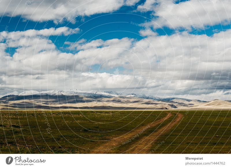the field in front of the hills Field Hill hillside Hilly landscape nomad altay Landscape Nature Green Grass Summer countryside Blue Blue sky Clouds mountains