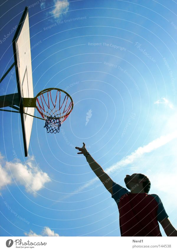 Sky Man Hand Blue Sun Clouds Sports Playing Arm Beautiful weather Upward Grasp Blue sky Basketball Reach Basketball basket