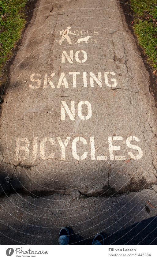 Dog Green White Animal Meadow Lanes & trails Grass Gray Stone Going Characters Sign Skateboard Pictogram Cycle path