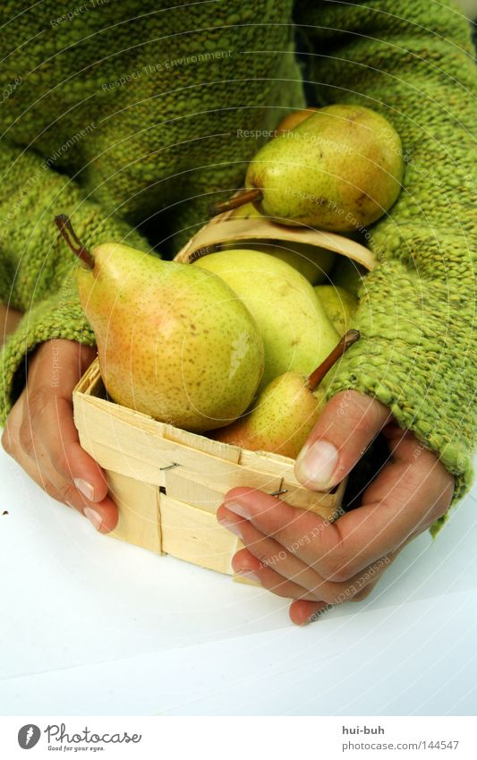 Pear Girl. Basket Hand Human being Green Autumn Fruit Nature Fresh Delicious Sense of taste Healthy Contentment Harmonious Nutrition Food Chimney Plant Tree