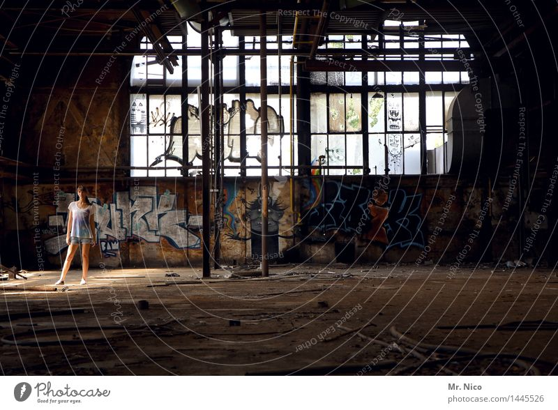 Youth (Young adults) Young woman Loneliness Window Graffiti Feminine Exceptional Dirty Stand Observe Cool (slang) Cable Factory Trashy Ruin Destruction