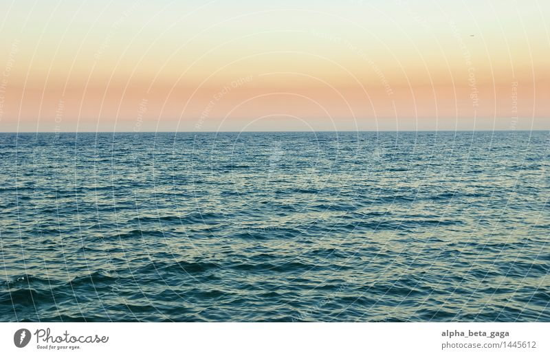 farsightedness Vacation & Travel Far-off places Summer Ocean Island Water Cloudless sky Horizon Sunrise Sunset Spring Autumn Waves Barcelona Swimming & Bathing