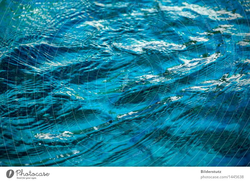 Nature Blue Water Relaxation Calm Environment Movement Natural Swimming & Bathing Glittering Fresh Waves Wet Soft Elements Wellness