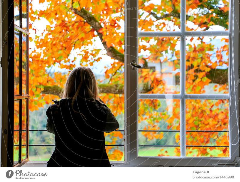 Human being Nature Youth (Young adults) Young woman Tree Relaxation Landscape 18 - 30 years Adults Environment Architecture Autumn Interior design Emotions