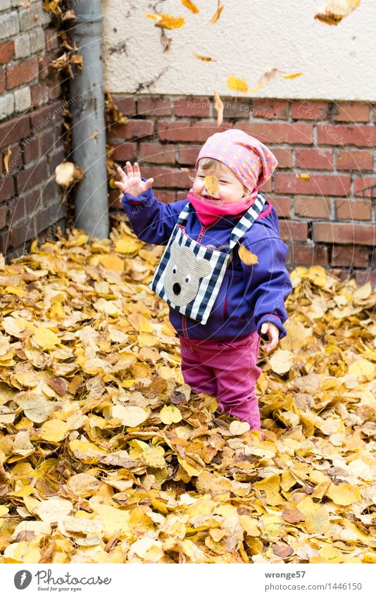 leaf storm Child Toddler Girl Infancy 1 Human being 1 - 3 years Smiling Laughter Stand Illuminate Happiness Happy Funny Blue Brown Multicoloured Yellow Gray
