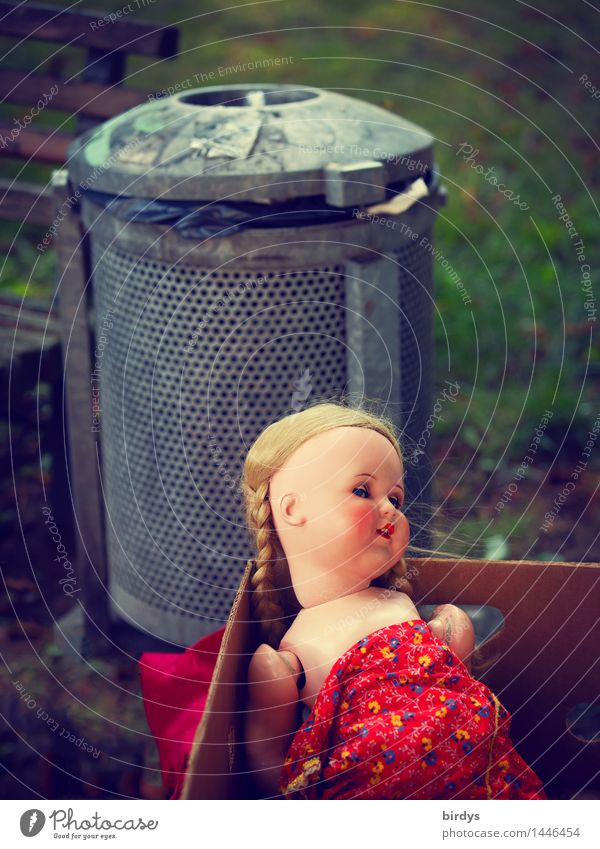 destiny Park Toys Doll Trash container Wastepaper basket Cardboard Smiling Looking Sadness Old Creepy Broken Feminine Emotions Death Pain Disappointment