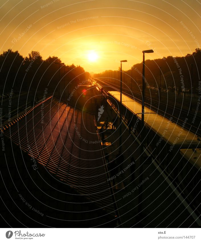 Sun Dark Moody Lighting Transport Railroad Arrangement Train station Traffic infrastructure Illuminate Dazzle Sunrise Glare effect