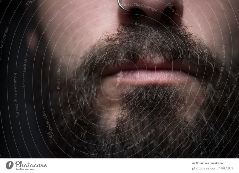 Young man with piercing in the nose and full beard Face Human being Masculine Youth (Young adults) Man Adults Facial hair 1 30 - 45 years Jewellery Nose ring