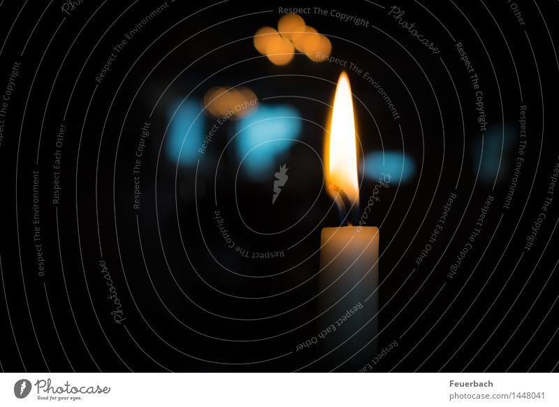 by candlelight Dinner Banquet Calm Meditation Christmas & Advent Fire Candle Elegant Happy Warmth Blue Orange White Emotions Moody Contentment Warm-heartedness