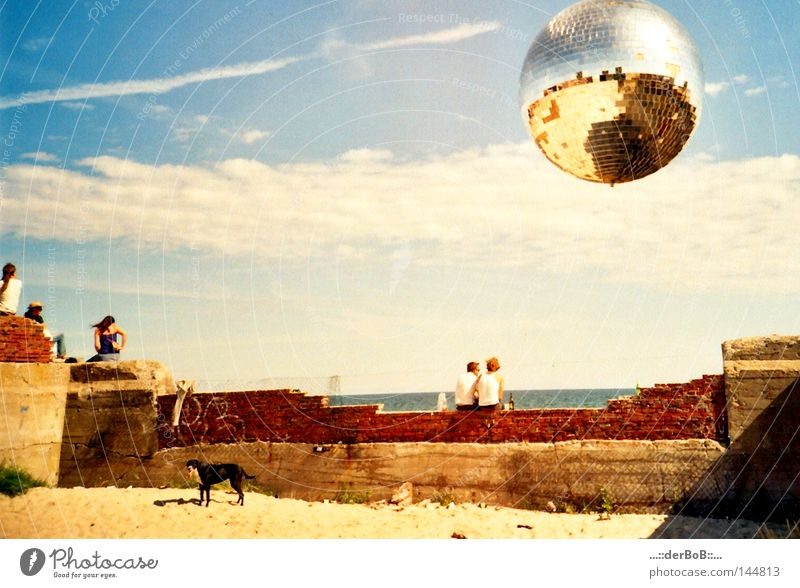 closing time Joy Intoxicant Relaxation Calm Sun Beach Ocean Music Dance Ball Human being Friendship Sky Clouds Wall (barrier) Wall (building) Dog Disco ball