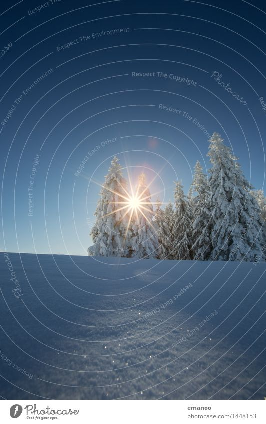 Sky Nature Vacation & Travel Blue Sun Tree Landscape Winter Forest Cold Mountain Snow Snowfall Tourism Air Ice