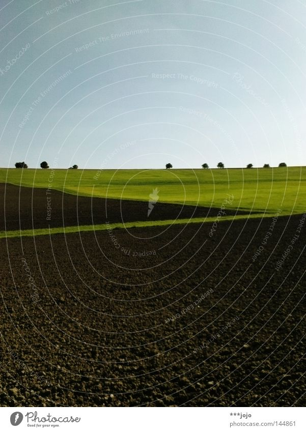 Nature Tree Autumn Meadow Brown Field Earth Agriculture Americas Geometry Furrow Avenue Mud Rural Argentina