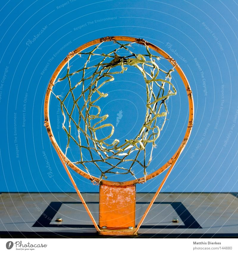 Ball after basket perspective Basket Basketball basket Ball sports Summer Autumn Sunlight Worm's-eye view Sports Air Fastening Playing Strike Depth of field