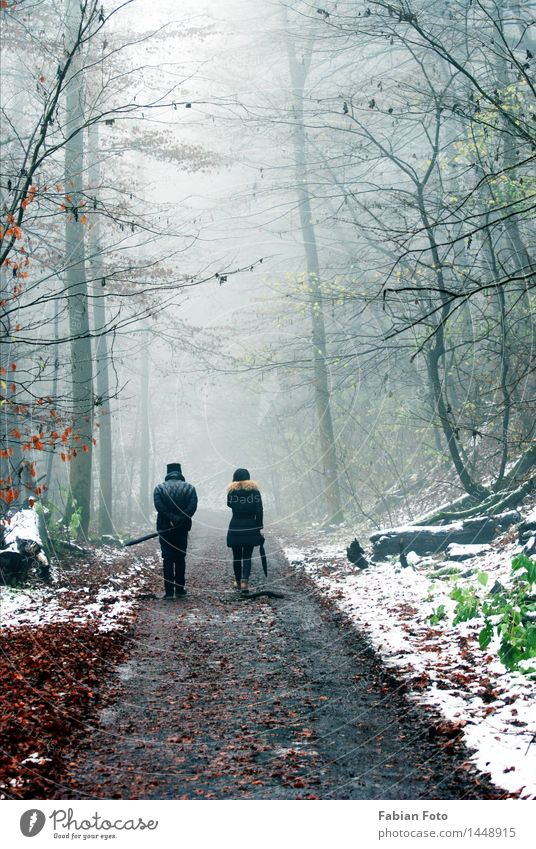 Human being Woman Man Tree Winter Forest Adults Lanes & trails Snow Couple Going Together Ice Fog Hiking Drops of water