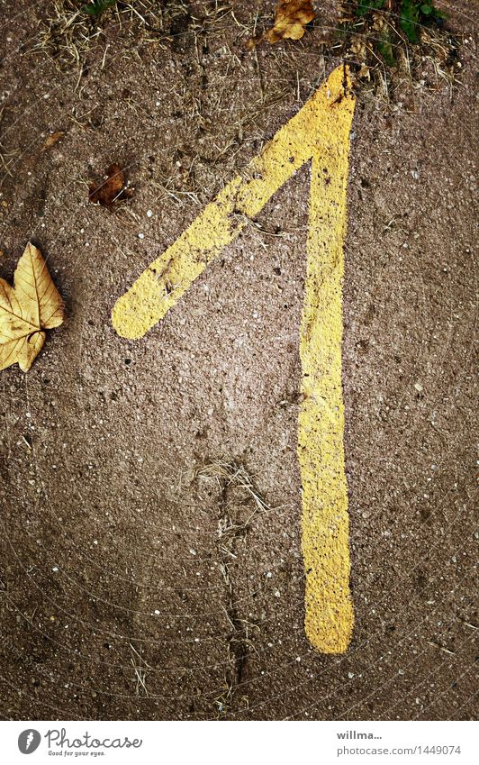 The disagreement dials. Birthday 1 Human being Autumn Digits and numbers Brown Yellow Date Autumnal Autumn leaves Age Number one January Jubilee Colour photo