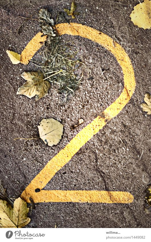 I don't think so. Autumn Digits and numbers 2 Brown Yellow Leaf Limp Autumnal Date Jubilee Ground Transience Agricultural crop Colour photo Exterior shot