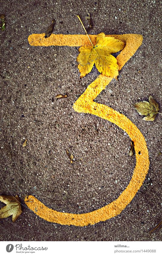 Three dials. Autumn Digits and numbers 3 Brown Yellow Date Jubilee Leaf Autumnal Colour photo Exterior shot Bird's-eye view