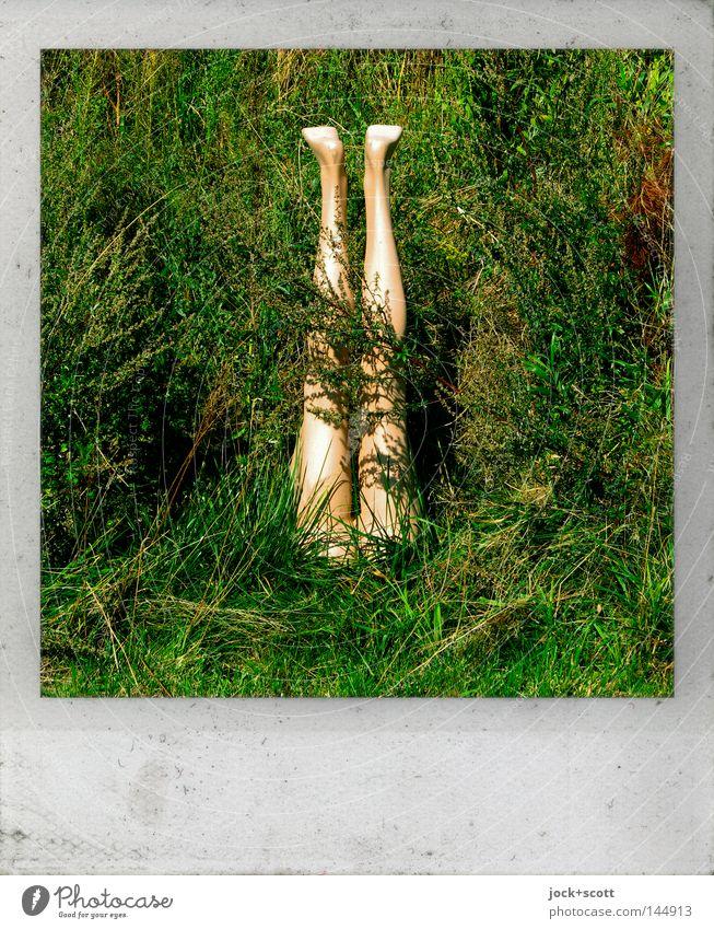 Human being Green Emotions Grass Garden Legs Feet Fear Dangerous Sign Polaroid Hide Make Whimsical Surrealism Street art