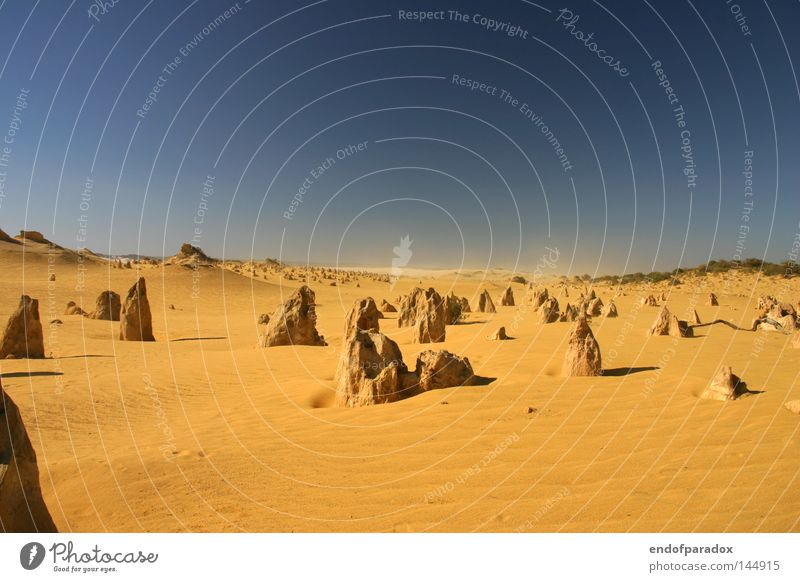 ___--__---_----x Australia Western Australia Stone Pinnacles Sky Sand Orange Blue Sandstorm National Park Trip Intoxication Vacation & Travel Earth Land Feature