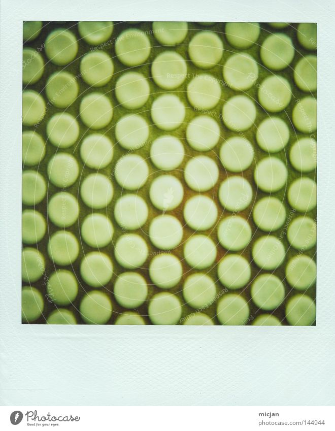 Green Wall (building) Wall (barrier) Lighting Photography Circle Arrangement Bathroom Floor covering Point Analog Polaroid Row Boredom Geometry Pattern