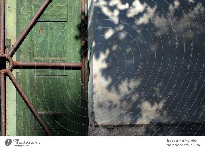 Tree Calm Wall (building) Wood Door Facade Derelict Rod Grating
