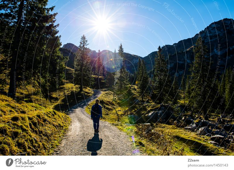 Sky Nature Vacation & Travel Youth (Young adults) Blue Green Young woman Sun Relaxation Landscape Mountain Adults Autumn Meadow Lanes & trails Natural