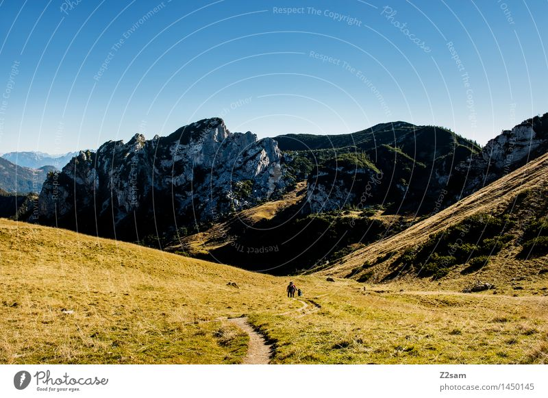 up and down Leisure and hobbies Hiking Human being Nature Landscape Sky Sun Autumn Beautiful weather Meadow Rock Alps Mountain Peak Relaxation Going Fresh