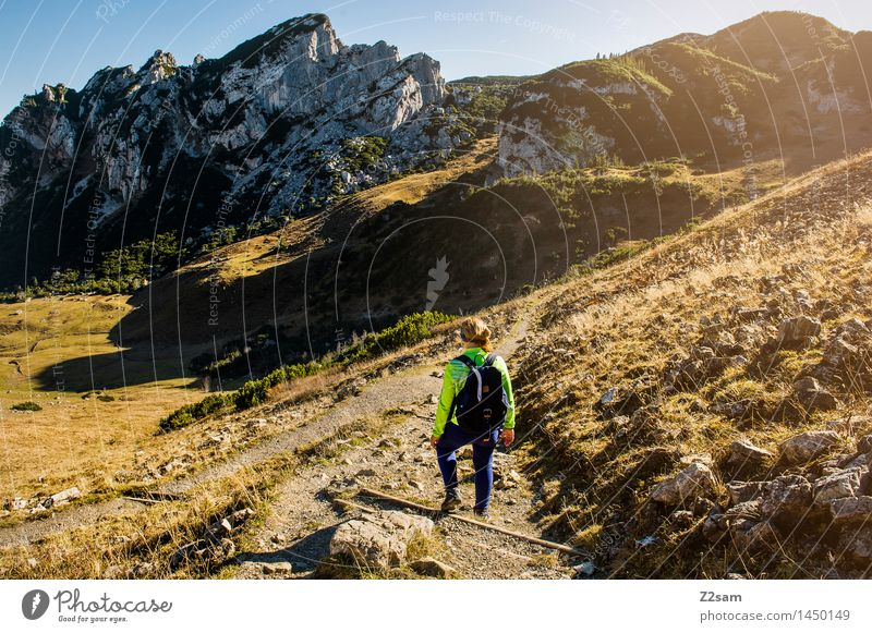 descent Leisure and hobbies Trip Hiking Feminine Young woman Youth (Young adults) 18 - 30 years Adults Nature Landscape Autumn Beautiful weather Alps Mountain