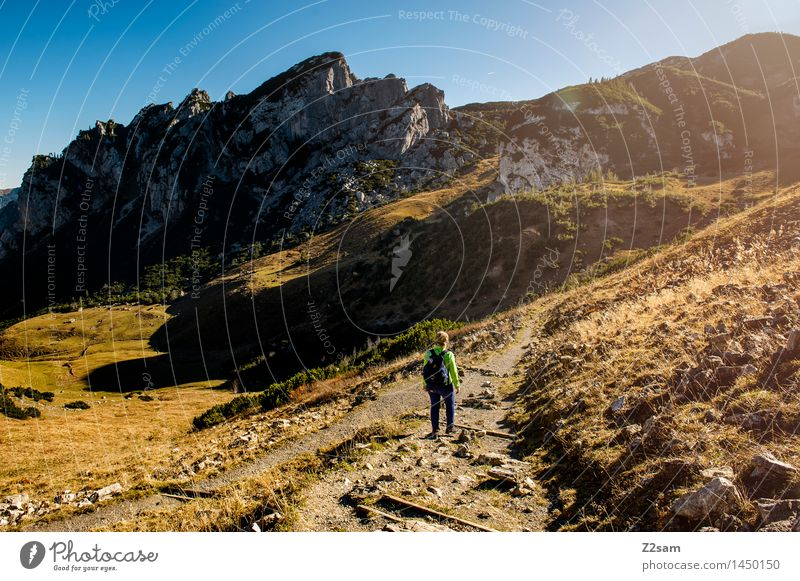 Nature Youth (Young adults) Sun Relaxation Landscape Loneliness 18 - 30 years Mountain Adults Autumn Meadow Movement Natural Feminine Style Boy (child)