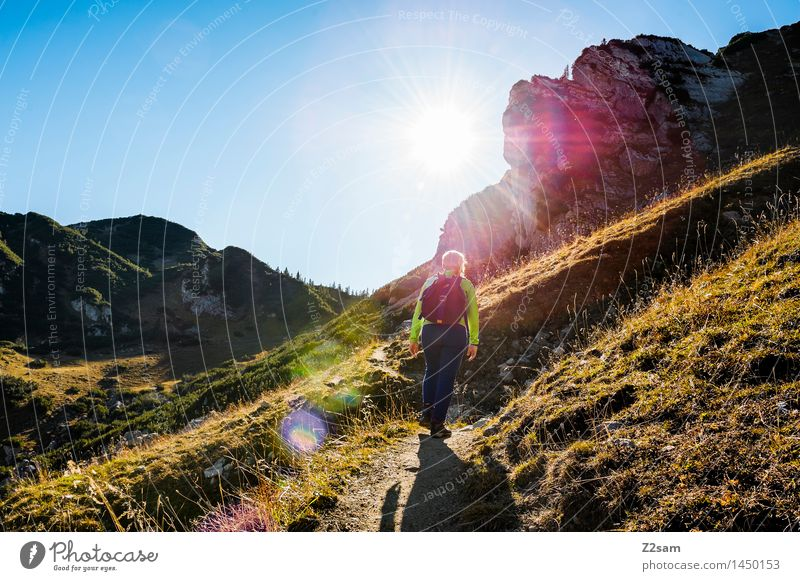 Come on, come on! Lifestyle Leisure and hobbies Hiking Young woman Youth (Young adults) Nature Landscape Sky Autumn Beautiful weather Meadow Alps Mountain Peak