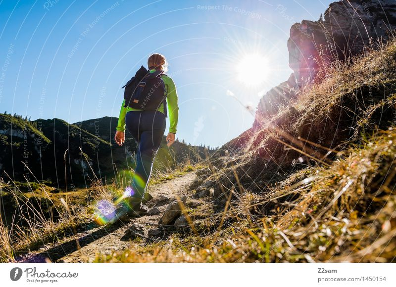 Hiker on the way to the Memminger Hut Leisure and hobbies Adventure Hiking Feminine Young woman Youth (Young adults) 18 - 30 years Adults Nature Landscape Sun
