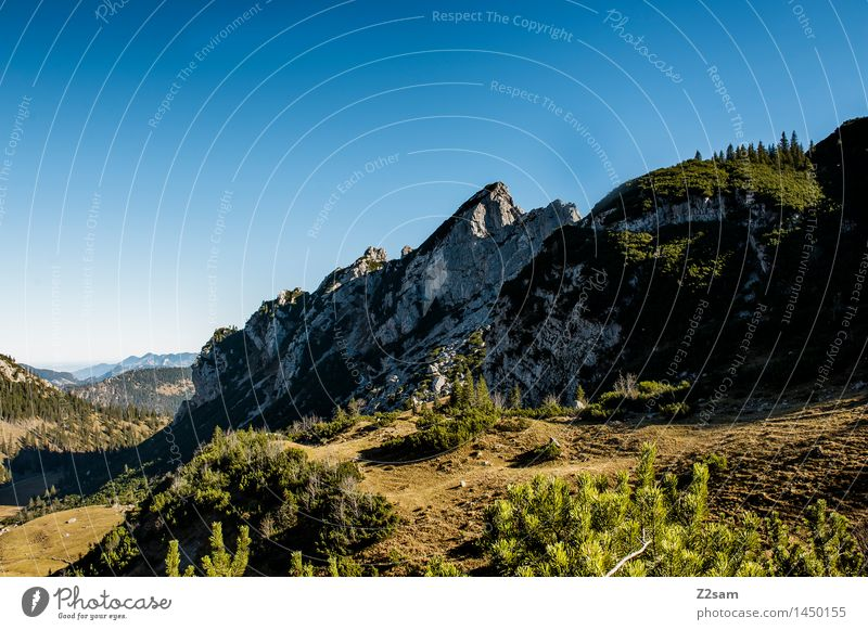 Rotwand Leisure and hobbies Hiking Environment Nature Landscape Sky Autumn Beautiful weather Bushes Forest Rock Alps Mountain Peak Gigantic Large Sustainability