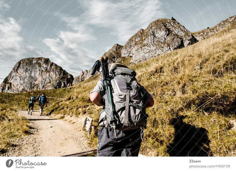 alpine backpacker Leisure and hobbies Hiking Human being 3 Autumn Grass Bushes Hill Rock Alps Going Natural Athletic Patient Disciplined Endurance Adventure