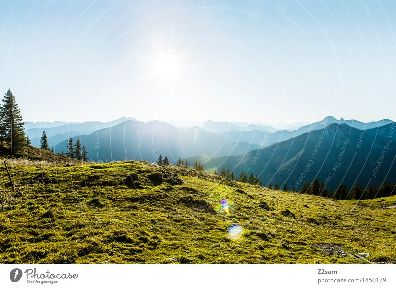 Rotwand Leisure and hobbies Hiking Environment Nature Landscape Sky Sunlight Beautiful weather Meadow Alps Mountain Peak Fresh Natural Blue Green Loneliness