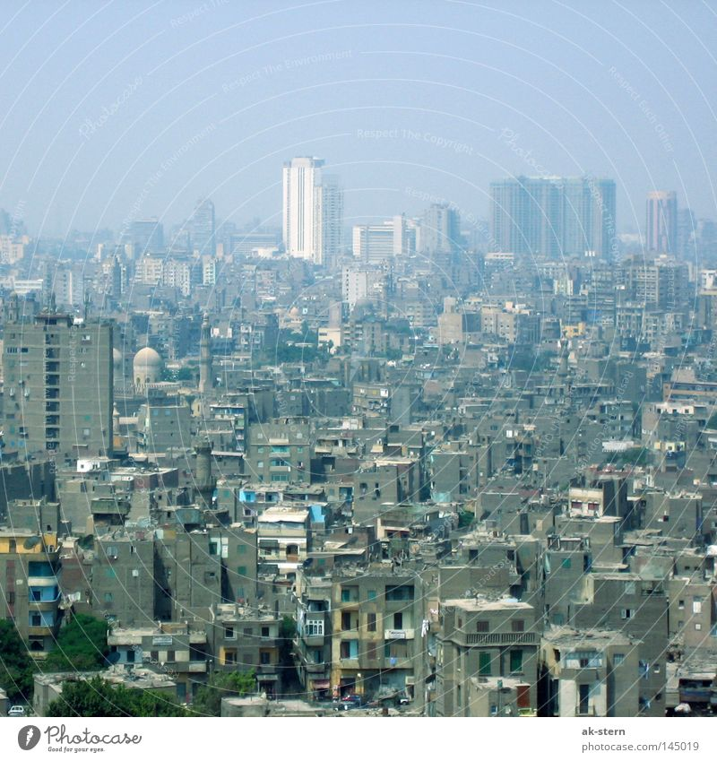 a hint of Cairo Town Vantage point Africa Egypt Slum area High-rise Smog Suburb Roof Quarter Living or residing Neighbor Looking North Africa Lifestyle Ghetto