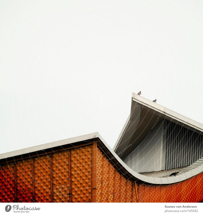 Harmony II Berlin Philharmonic Culture Iconic Design Art Concert House (Residential Structure) Building Facade Wall (building) Tin Yellow Concert Hall