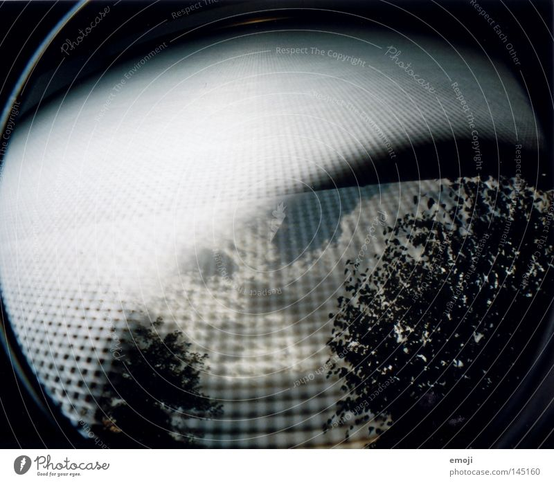 fascination Analog Fisheye Window Tree Bushes Clouds Sky Grating Insect repellent Strange Accident Lomography Scan trees Net Distorted Funny Irritation