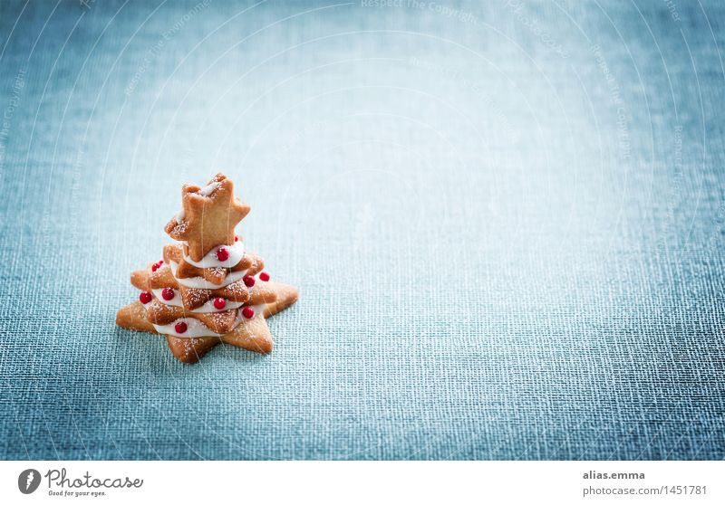 blue christmas Christmas & Advent Cookie Christmas tree December Blue Structures and shapes Christmas biscuit Embellish Festive Abstract Copy Space Stack