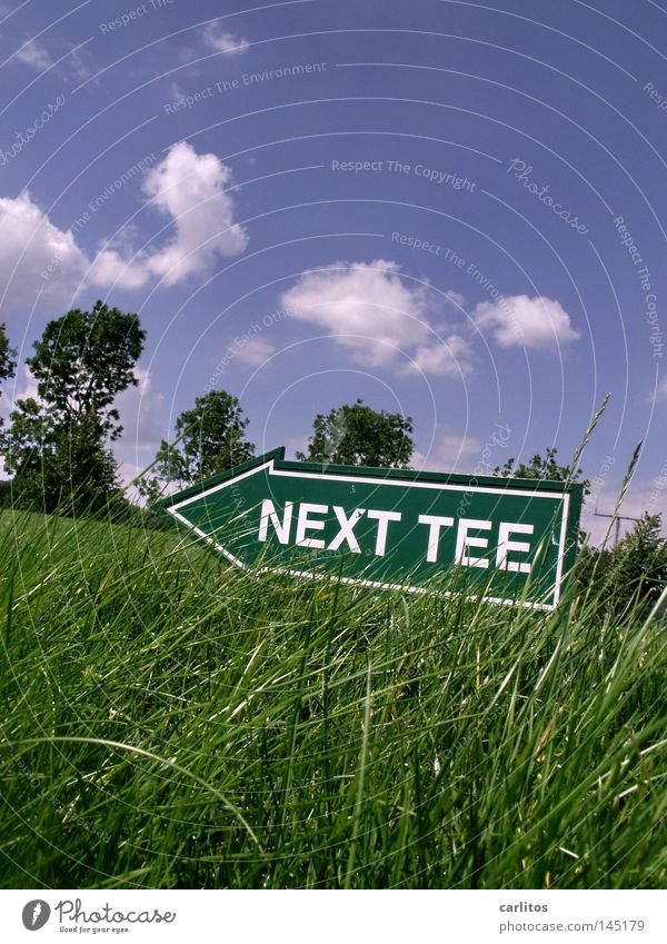 it's teetime Ace Tee off Golf club Wood Iron Pond Endurance Air Anger Aggravation Playing Sporting event Competition hole-in-one Blow Ball Tea fairway rough