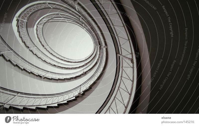 ::SNAIL HOUSE:: Stairs Occur Staircase (Hallway) Spiral Interior design Handrail Banister Detail annular elson Architecture