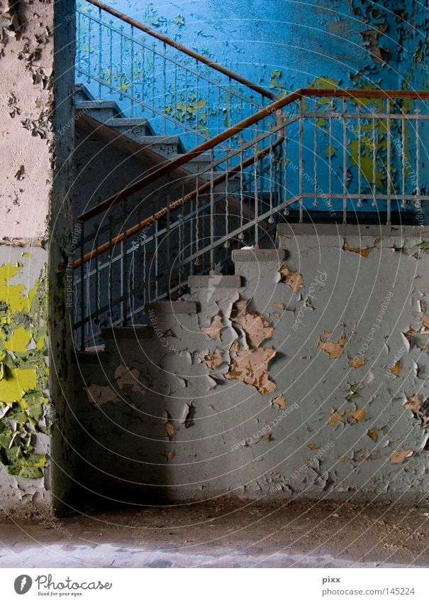 Green Blue Wall (building) Above Wood Gray Dye Wall (barrier) Architecture Stairs End Living or residing Transience Gastronomy Painting (action, work) Derelict